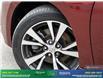 2016 Nissan Maxima Platinum (Stk: 14338) in Brampton - Image 10 of 30