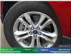 2015 Ford Edge SEL (Stk: 14353) in Brampton - Image 10 of 30