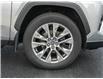2019 Toyota RAV4 Limited (Stk: PR8063) in Windsor - Image 5 of 23
