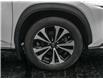 2019 Lexus NX 300 Base (Stk: PL0619) in Windsor - Image 4 of 23