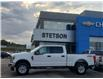 2019 Ford F-250  (Stk: 21-392A) in Drayton Valley - Image 2 of 18