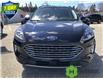 2021 Ford Escape Titanium Hybrid Blue