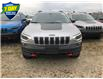 2021 Jeep Cherokee Trailhawk (Stk: 95943) in St. Thomas - Image 3 of 19