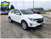 2021 Chevrolet Equinox LT (Stk: M071) in Grimsby - Image 3 of 14