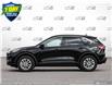 2021 Ford Escape SE (Stk: 21E3050) in Kitchener - Image 3 of 23