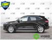 2021 Ford Escape SE Hybrid (Stk: 21E2250) in Kitchener - Image 3 of 23