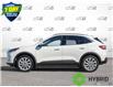 2021 Ford Escape Titanium Hybrid (Stk: 21E2270) in Kitchener - Image 3 of 23