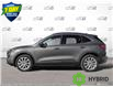 2021 Ford Escape Titanium Hybrid (Stk: 21E2320) in Kitchener - Image 3 of 23