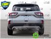 2021 Ford Escape Titanium Hybrid (Stk: 21E2880) in Kitchener - Image 5 of 23