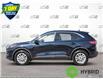 2021 Ford Escape SE Hybrid (Stk: D105070) in Kitchener - Image 3 of 23