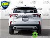 2021 Ford Escape SEL Hybrid (Stk: D107160) in Kitchener - Image 5 of 22