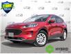 2021 Ford Escape SE Hybrid (Stk: D107180) in Kitchener - Image 1 of 23