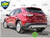 2021 Ford Escape SE Hybrid (Stk: D107180) in Kitchener - Image 4 of 23