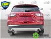 2021 Ford Escape SE Hybrid (Stk: D107180) in Kitchener - Image 5 of 23