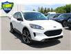 2021 Ford Escape SE White