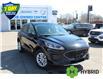 2021 Ford Escape SE Hybrid (Stk: 210160) in Hamilton - Image 2 of 20