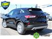 2021 Ford Escape SE Hybrid (Stk: 210160) in Hamilton - Image 4 of 20