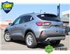2021 Ford Escape SE Hybrid (Stk: 210177) in Hamilton - Image 5 of 24