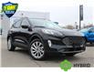 2021 Ford Escape Titanium Hybrid (Stk: 210196) in Hamilton - Image 1 of 25