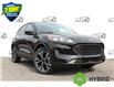 2021 Ford Escape SE Hybrid (Stk: 210336) in Hamilton - Image 1 of 22