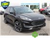2021 Ford Escape SE Hybrid (Stk: 210336) in Hamilton - Image 2 of 22
