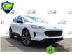 2021 Ford Escape SEL Hybrid (Stk: 210369) in Hamilton - Image 1 of 24