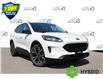 2021 Ford Escape SE Hybrid (Stk: 210371) in Hamilton - Image 1 of 19