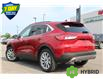 2021 Ford Escape Titanium Hybrid (Stk: 210493) in Hamilton - Image 3 of 24