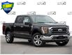 2021 Ford F-150 XLT (Stk: 21F1181) in St. Catharines - Image 1 of 25