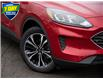 2021 Ford Escape SE (Stk: 21ES156) in St. Catharines - Image 9 of 23