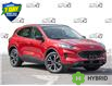 2021 Ford Escape SE Hybrid (Stk: 21ES499) in St. Catharines - Image 1 of 25