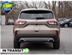 2021 Ford Escape SEL Hybrid (Stk: 21ES299) in St. Catharines - Image 5 of 24