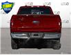 2021 Ford F-150 XLT (Stk: FD249) in Sault Ste. Marie - Image 5 of 22