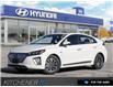 2020 Hyundai Ioniq EV Ultimate (Stk: 59774) in Kitchener - Image 1 of 28