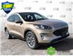 2021 Ford Escape Titanium Hybrid (Stk: S1155) in St. Thomas - Image 1 of 27