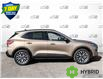 2021 Ford Escape Titanium Hybrid (Stk: S1155) in St. Thomas - Image 3 of 27