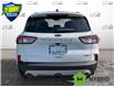 2021 Ford Escape Titanium Hybrid (Stk: S1320) in St. Thomas - Image 5 of 28