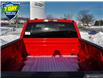 2021 Ford F-150 XLT (Stk: W0034) in Barrie - Image 11 of 26