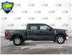 2021 Ford F-150 XLT (Stk: W0255) in Barrie - Image 3 of 25