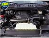 2021 Ford F-150 XLT Black