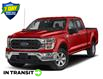 2021 Ford F-150 XLT Red