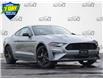 2021 Ford Mustang EcoBoost (Stk: MC249) in Waterloo - Image 1 of 15