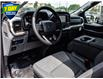 2021 Ford F-150 XLT (Stk: FC929) in Waterloo - Image 11 of 25