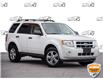 2010 Ford Escape XLT Automatic (Stk: 40-101Z) in St. Catharines - Image 1 of 27