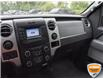 2013 Ford F-150 XLT (Stk: 50-312) in St. Catharines - Image 20 of 25