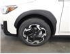 2021 Subaru Crosstrek Limited (Stk: 229361) in Lethbridge - Image 10 of 29