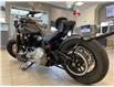2019 Harley-Davidson SOFTTAIL FLSL FLSL SOFTAIL SLIM (Stk: 27967) in Carleton Place - Image 3 of 16