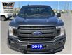 2019 Ford F-150 XLT (Stk: 58170) in Carleton Place - Image 8 of 24