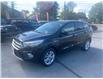2017 Ford Escape SE (Stk: 212006C) in Fredericton - Image 1 of 9