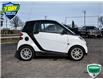 2009 Smart Fortwo  (Stk: 21B195C) in Tillsonburg - Image 5 of 20